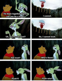 Girl Memes, Piglet, and Pooh: Tie them together Piglet  can you tie a knot?  Uh, so you can knot?  Not knot?  Pooh?!!  I cannot.  No, I cannot knot.  Who's there?  Pooh who? https://t.co/du08nL1ZPD