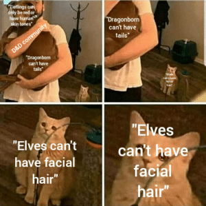 """The real travesty: Tieflings can  only be red or  have human  """"Dragonborn  can't have  skin tones""""  tails""""  D&D community  """"Dragonborn  can't have  tails""""  """"Elves  can't have  facial  hair  """"Elves  """"Elves can't  can't have  have facial  facial  hair""""  hair"""" The real travesty"""
