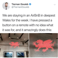 Airbnb, Idea, and Wales: Tiernan Douieb  @TiernanDouieb  We are staying in an AirBnB in deepest  Wales for the week. I have pressed a  button on a remote with no idea what  it was for, and it amazingly does this:
