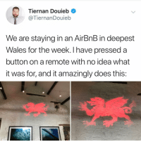 Memes, Airbnb, and 🤖: Tiernan Douieb  @TiernanDouieb  We are staying in an AirBnB in deepest  Wales for the week. I have pressed a  button on a remote with no idea what  it was for, and it amazingly does this: This makes sense to me
