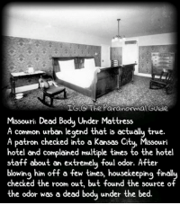 Follow @the.paranormal.guide for more! . . . . . HASHTAGS BELOW . . . . . . . . . . . scary creepy gore horrormovie blood horrorfan love horrorjunkie ahs twd horror supernatural horroraddict makeup murder spooky terror creepypasta evil metal bloody follow paranormal ghost haunted me serialkiller like4like deepweb: TIG The Paranormal Guide  Missouri: Dead Body Under Mattress  A common urban legend that is actually true.  A Patron checked into a Kansas Ci  Missouri  hotel and complained multiple times to the hotel  staff about an extremely foul odor. After  blowing him off a few times, housekeeping finall  checked the room out, but found the source of  the odor was a dead body under the bed. Follow @the.paranormal.guide for more! . . . . . HASHTAGS BELOW . . . . . . . . . . . scary creepy gore horrormovie blood horrorfan love horrorjunkie ahs twd horror supernatural horroraddict makeup murder spooky terror creepypasta evil metal bloody follow paranormal ghost haunted me serialkiller like4like deepweb