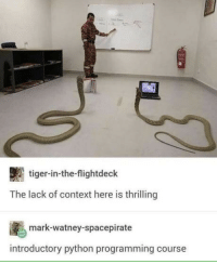 Snakes, Tiger, and Programming: tiger-in-the-flightdeck  The lack of context here is thrilling  mark-watney-spacepirate  introductory python programming course Snakes?