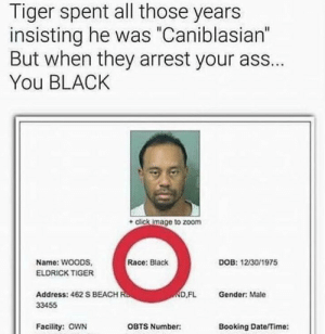 """Ass, Click, and Zoom: Tiger spent all those years  insisting he was """"Caniblasian""""  But when they arrest your ass..  You BLACK  + click image to zoom  Name: WOODS,  ELDRICK TIGER  Race: Black  DOB: 12/30/1975  Address: 462 S BEACH  33455  D,FL  Gender: Male  Facility: oOWN  OBTS Number:  Booking Date/Time:"""