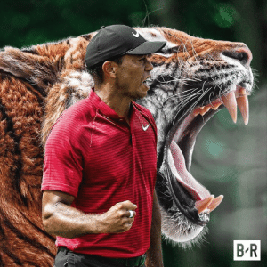 Masters, Tiger, and Major: Tiger wins the 2019 Masters, the 15th major championship of his career! 🐅