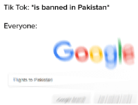 Pakistan, Government, and Do It: Tik Tok: *is banned in Pakistan*  Everyone:  Go Government had to do it to em
