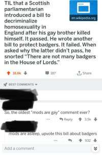 """Gay Brother: TIL that a Scottish  parliamentarian  introduced a bill to  decriminalize  homosexuality in  England after his gay brother killed  himself. It passed. He wrote another  bill to protect badgers. It failed. When  asked why the latter didn't pass, he  snorted """"There are not many badgers  in the House of Lords.""""  en.wikipedia.org  16.6k  187  T, Share  BEST COMMENTS  So, the oldest """"mods are gay"""" comment ever?  Reply  3.5k  mods are asleep, upvote this bill about badgers  932  Add a comment"""