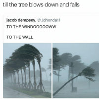 Tree, Black Twitter, and The Wall: till the tree blows down and falls  jacob dempsey.@Jdhondal1  TO THE WINDOOoooWW  TO THE WALL om