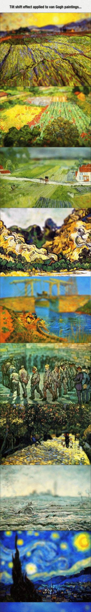 Club, Paintings, and Tumblr: Tilt shift effect applied to van Gogh paintings... laughoutloud-club:  Van Gogh's Work From Another Perspective
