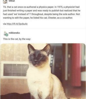 https://t.co/4YXIJW5Eey: tilthat  TIL that a cat once co-authored a physics paper. In 1975, a physicist had  just finished writing a paper and was ready to publish but realized that he  had used 'we' instead of 'T' throughout, despite being the sole author. Not  wanting to edit the paper, he listed his cat, Chester, as a co-author  via http://ift.tt/2pvbu4c  mikkeneko  This is the cat, by the way: https://t.co/4YXIJW5Eey