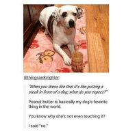 "Dogs, Memes, and Dress: tilthingsarebrighter:  When you dress like that it'slikeputting a  steak in front ofa dog, what do you expect?""  Peanut butter is basically my dog's favorite  thing in the world.  You know why she's not even touching it?  I said ""no dogs> people (And stop! excusing! rape! Your bulshitty victim-blaming arguments are disgusting)"