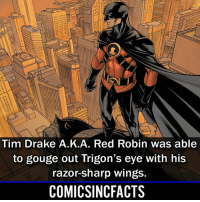Batman, Disney, and Drake: Tim Drake A.K.A. Red Robin was able  to gouge out Trigon's eye with his  razor-sharp wings.  COMICSINCFACTS I don't know why, but I find this to be very impressive🤷🏾‍♂️... Please Turn On Your Post Notifications For My Account😜👍! - - - - - - - - - - - - - - - - - - - - - - - - Batman Superman DCEU DCComics DeadPool DCUniverse Marvel Flash MarvelComics MCU MarvelUniverse Netflix DeathStroke JusticeLeague StarWars Spiderman Ironman Batman Logan TheJoker Like4Like L4L WonderWoman DoctorStrange Flash JusticeLeague WonderWoman Hulk Disney CW DarthVader Tonystark Wolverine