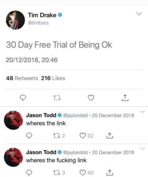 Timbers: Tim Drake  @timbers  30 Day Free Trial of Being Ok  20/12/2018, 20:46  48 Retweets 216 Likes  Jason Todd @jaybirddd 20 December 2018  wheres the link  Jason Todd @jaybirddd 20 December 2018  wheres the fucking link