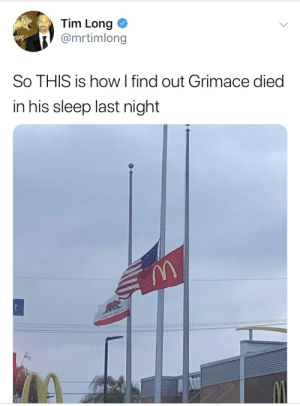 Sleep, How, and Last Night: Tim Long  @mrtimlong  So THIS is how I find out Grimace died  in his sleep last night  t