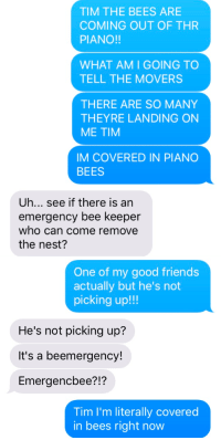 Friends, Life, and Molly: TIM THE BEES ARE  COMING OUT OF THR  PIANO!!  WHAT AM I GOING TO  TELL THE MOVERS  THERE ARE SO MANY  THEYRE LANDING ON  ME TIM  IM COVERED IN PIANO  BEES  Uh... see if there is an  emergency bee keeper  who can come remove  the nest?   One of my good friends  actually but he's not  picking up!!!  He's not picking up?  It's a beemergency!  Emergencbee?!?  Tim I'm literally covered  in bees right now vampireapologist:  what's up my name's molly anne i'm 23 years old and i want my fuckin life to be normal for just one (1) day! @quantim-mechanics