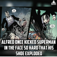 Ouch😶😶...and this is the same guy who y'all claim that Saitama couldn't beat even tho Alfred was on some enhancement pills -- Alfred With Enhancement Pills vs Golden Oldie Aunt May (Fact 567) Who win?!: TIMA  ERO FACT  MORE  YOU HEAR  MEP  ALFREDONCE KICKEDSUPERMAN  IN THE FACE SO HARD THATHIS  SHOE EXPLODED Ouch😶😶...and this is the same guy who y'all claim that Saitama couldn't beat even tho Alfred was on some enhancement pills -- Alfred With Enhancement Pills vs Golden Oldie Aunt May (Fact 567) Who win?!