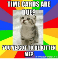 Meme, Image, and Image Search: TIME CARDS ARE  DUE  YOU'VE GOT TO BEKITTEN  memegenerator.net time card meme - Yahoo Search Results Yahoo Image Search Results