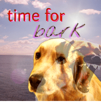 Reddit, Time, and Com: time for  bark [Src]