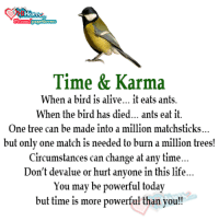 bird: Time & Karma  When a bird is alive... it eats ants.  When the bird has died... ants eat it.  One tree can be made into a million matchsticks  but only one match is needed to burn a  million trees!  Circumstances can change at any time.  Don't devalue or hurt anyone in this life.  You may be powerful today  but time is more powerful than you