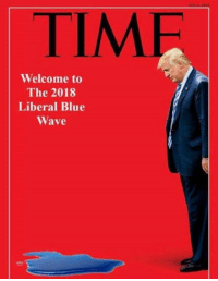 Memes, Watch Out, and Blue: TIME  Welcome to  The 2018  Liberal Blue  Wave Hahaha, WATCH OUT, hahaha! -JUNIOR