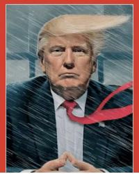TIMEmagazine's new cover is a look at the chaos inside Trump's White House: TIMEmagazine's new cover is a look at the chaos inside Trump's White House