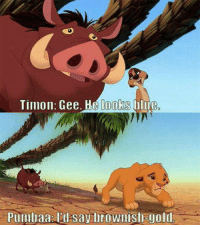 The lion king did it first: Timon. Gee. He looks lue  Plllllllaa say brownishagold The lion king did it first