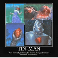 Finals, Memes, and Saw: TIN-MAN  Much to Dorothys dismay, the Tin-man finally got his heart  She never saw it coming. Thor ~