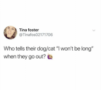 "Memes, 🤖, and Dog: Tina foster  @Tinafos02171706  Who tells their dog/cat ""l won't be long""  when they go out?"