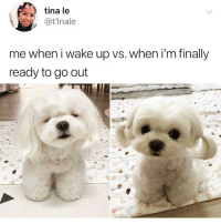 Funny, Can, and Wake: tina le  @t1nale  me when i wake up vs. when i'm finally  ready to go out Ok where can I get 12 of these cuties omfg😍😍TwitterCreds: @t1nale