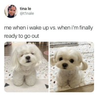 Wake, Wake Up, and Finally: tina le  @t1nale  me when i wake up vs. when i'm finally  ready to go out