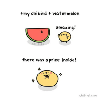 Memes, Giant, and Amazing: tiny chibird + watermelon  amazing  CHIBIRD  there was a prize inside!  chibird.com What's your favorite fruit? 🍉Tiny chibird is just amazed at such a giant watermelon slice!