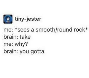 That's smooth: tiny-jester  me: *sees a smooth/round rock*  brain: take  me: why?  brain: you gotta That's smooth