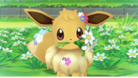 Love, Tumblr, and Blog: tinytheursaring:  eowynwise: Eevee loves you unconditionally.  i love Eevee unconditionally
