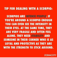 May 16, 2017. You flutter from one person to the other, but your wings are made of lead, and.. ...FOR FULL HOROSCOPE VISIT: http://horoscope-daily-free.net/scorpio: TIP FOR DEALING WITH A SCORPIO:  INTENSE PEOPLE. IF  SCORPIOS ARE  YOU'RE AROUND A SCORPIO ENOUGH  YOU CAN EVEN SEE THE INTENSITY IN  THEIR EYES. AT THE SAME TIME, THEY  ARE VERY FRAGILE AND OFTEN FEEL  AND  STABILITY  ALONE. THEY NEED  SOMEONE IN THEIR CORNER WHO IS AS  LOYAL AND PROTECTIVE AS THEY ARE  WITH THE STRENGTH TO STICK AROUND.  ZODIACCITY May 16, 2017. You flutter from one person to the other, but your wings are made of lead, and.. ...FOR FULL HOROSCOPE VISIT: http://horoscope-daily-free.net/scorpio