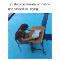Crying, Memes, and Good: Tip: study underwater so that no  one can see you crying Good tip 😂