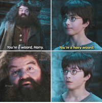 is typing... ⠀⠀⠀⠀⠀⠀⠀⠀► 72.7k followers◄ — ✿ — You're a hairy wizard. — ✿ — Q; describe Hagrid in one word - A; kind. — ✿ — Follow my other accounts: → @TheHagrids (my textpost account) → @FictionalNovels (my bookstagram) → @TheFandomAlley (my fandom merch shop) — ✿ — [ philosopherscenes philosopher1k] — ✿ — © ThePhilosopherStones | Instagram | 2016: TIPS  You're a wizard, Harry.  You're a hairy wizard.  THEPHILOSOPHERSTONES e IG  Hrood is typing... ⠀⠀⠀⠀⠀⠀⠀⠀► 72.7k followers◄ — ✿ — You're a hairy wizard. — ✿ — Q; describe Hagrid in one word - A; kind. — ✿ — Follow my other accounts: → @TheHagrids (my textpost account) → @FictionalNovels (my bookstagram) → @TheFandomAlley (my fandom merch shop) — ✿ — [ philosopherscenes philosopher1k] — ✿ — © ThePhilosopherStones | Instagram | 2016