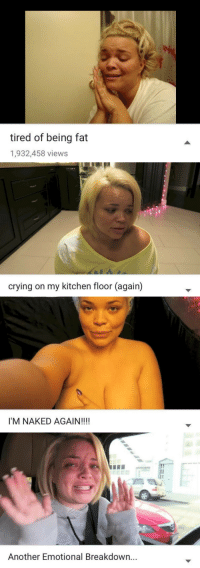 theshitneyspears: my four states of being: tired of being fat  1,932,458 views   crying on my kitchen floor (again)   I'M NAKED AGAIN!!!!   1  Another Emotional Breakdown... theshitneyspears: my four states of being