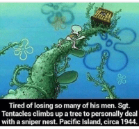 Memes, Nest, and Tree: Tired of losing so many of his men. Sgt.  Tentacles climbs up a tree to personally deal  with a sniper nest. Pacific Island, circa 1944 Go get em Sarn't 😂🤣