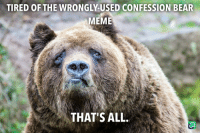 Confession Bear: TIRED OF THE WRONGLY-USED CONFESSION BEAR  MEME  THAT'S ALL