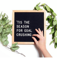 It's time to crush 'em goals real good this week 💪 Tuesday Inspiration via @letterfolk https://t.co/uwnpixDhQq: TIS THE  SEASON  FOR GOAL  CRUSHING It's time to crush 'em goals real good this week 💪 Tuesday Inspiration via @letterfolk https://t.co/uwnpixDhQq