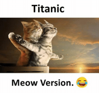 Titanic, Meow, and Meowe: Titanic  Meow Version.