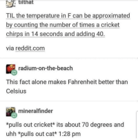 Being Alone, Animals, and Reddit: tithat  IU  TIL the temperature in F can be approximated  by counting the number of times a cricket  chirps in 14 seconds and adding 40  via reddit.com  radium-on-the-beach  This fact alone makes Fahrenheit better than  Celsius  mineralfinder  *pulls out cricket* its about 70 degrees and  uhh *pulls out cat* 1:28 pm Using animals to figure out daily measurements