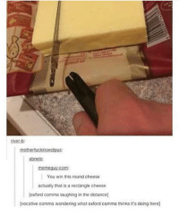 Funny, Memes, and Tumblr: tiver-b  abneis:  abneis:  You win this round cheese  actually that is a rectangle cheese  oxford comma laughing in the distance  vocative comma wondering what oxford comma thinks it's doing here) Follow us for more funny tumblr & textposts!!
