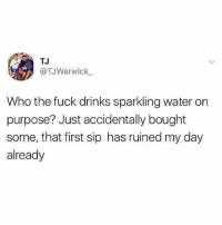 Memes, Fuck, and Water: TJ  @TJWarwick  Who the fuck drinks sparkling water on  purpose? Just accidentally bought  some, that first sip has ruined my day  already