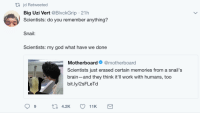 Blackpeopletwitter, God, and Work: tl jd Retweeted  Big Uzi Vert @BlvckGrip 21h  Scientists: do you remember anything?  Snail:  Scientists: my god what have we done  Motherboard @motherboard  Scientists just erased certain memories fr  brain-and they think it'll work with humans, too  bit.ly/2sFLeTd  om a snail's  9 <p>HAS SCIENCE GONE TOO FAR? (via /r/BlackPeopleTwitter)</p>