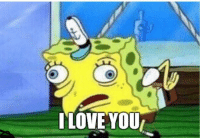 Funny, Love, and Tag Someone: TLOVE YOU Tag someone you love
