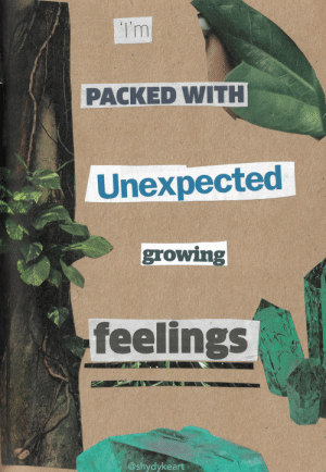 shydykeart:  oi where did these come from?: Tm  PACKED WITH  Unexpected  growing  feelings  @shydykeart shydykeart:  oi where did these come from?