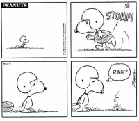 This strip was published on September 5, 1972. 🏈 Good luck to the New England Patriots and Atlanta Falcons at Super Bowl LI today!: Tm, Reg US. Pat. Off-All rights reserved  © 1972 by United Feature Syndicate, Inc  PEANUTS  .)STOMP  9-5  Sean?  RAH21 This strip was published on September 5, 1972. 🏈 Good luck to the New England Patriots and Atlanta Falcons at Super Bowl LI today!