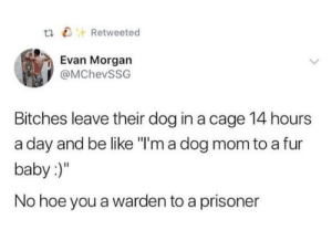 "Be Like, Hoe, and Mom: tn Retweetecd  Evan Morgan  @MChevSSG  Bitches leave their dog in a cage 14 hours  a day and be like ""l'm a dog mom to a fur  baby:)""  No hoe you a warden to a prisoner fur baby 🤢"