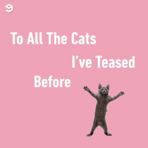 Cats, Dank, and Video: To All The Cats  I've Teased  Before This video is purrfect.