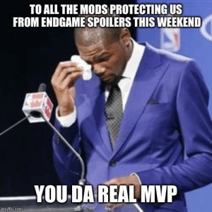 advice-animal:  It's deserved: TO ALL THE MODS PROTECTING US  FROM ENDGAME SPOILERS THIS WEEKEND  YOU DA REAL MVP  imgflip.com advice-animal:  It's deserved